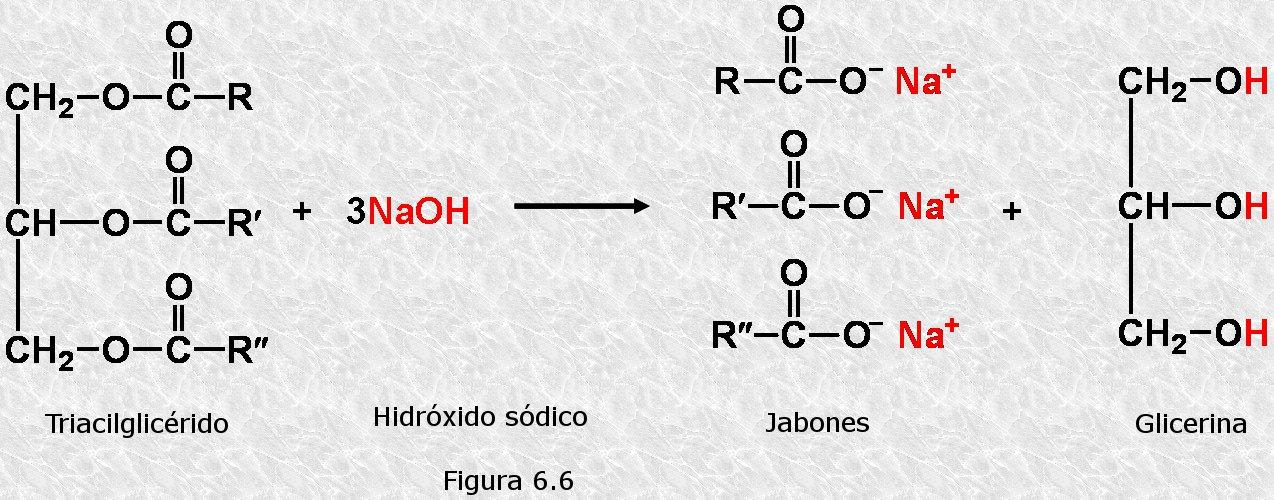 diferentes tipo formula:
