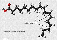 Ácido graso poliinsaturado