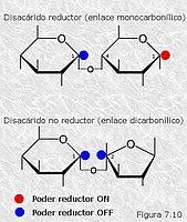 Tipos de enlace glicosídico