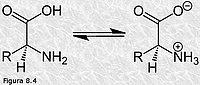 Aminoácidos: comportamiento ácido-base
