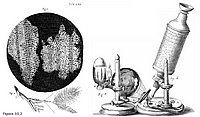 Microscopio de Robert Hooke