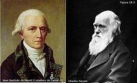 Lamarck y Darwin