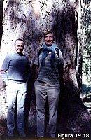 Matthew S. Meselson y Franklin W. Stahl